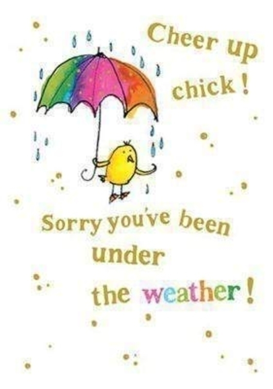 Cheer Up Chick Card by Catching Rainbows. Chick with umbrella on front with the words ' Cheer up chick! .. Sorry you've been under the weather!' on the front. 'Hope you feel brighter soon' on the inside. Comes with an orange envelope. Size 17x12cm