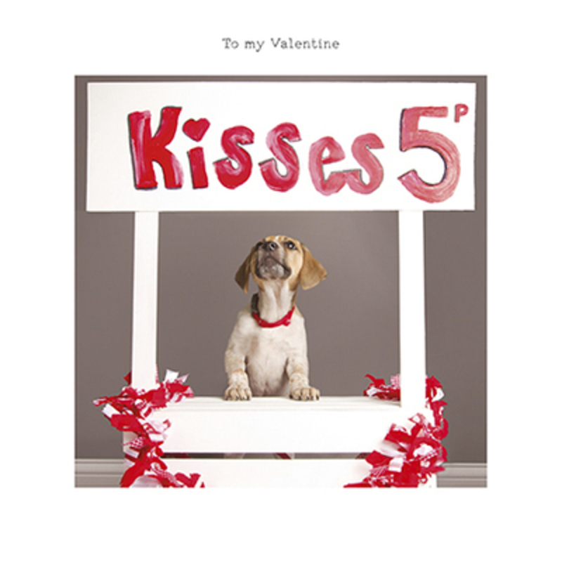 This Valentines Day greetings card from Paper Rose has a cute puppy sitting in a kissing booth with a sign Kisses 5p and To my Valentine written on the front. The card is perfect to send to someone to celebrate Valentines Day.  It has Happy Valentines Day written on the inside and comes complete with a red envelope.