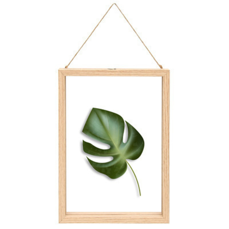Fallen Fruits Large Palm Leaf Floating Frame: Booker Gifts