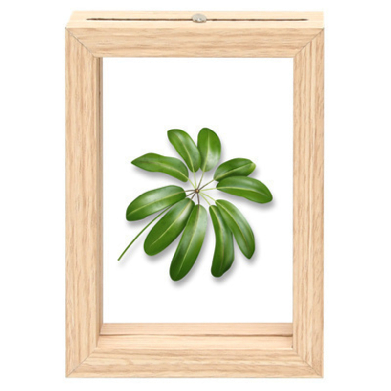 Fallen Fruits Small Palm Leaf Floating Frame: Booker Gifts