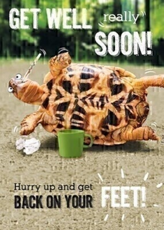 This novelty Get Well greetings card from the Art Group features a tortoise stuck on his back with a themometer in his mouth and GET WELL REALLY SOON!  HURRY UP AND GET BACK ON YOUR FREET! written on the front. The card is perfect to send to someone to cheer them up if they have been unwell or following an operation.  It has been left blank on the inside to write your own message and comes complete with a yellow envelope.