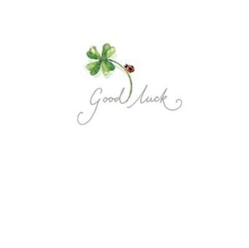This cute little greetings card from Paper Rose has a four leaf clover and ladybird with Good Luck written on the front. The card is blank inside so you can write your own message and it comes complete with envelope.  A lovely little card to send a Good Luck message.
