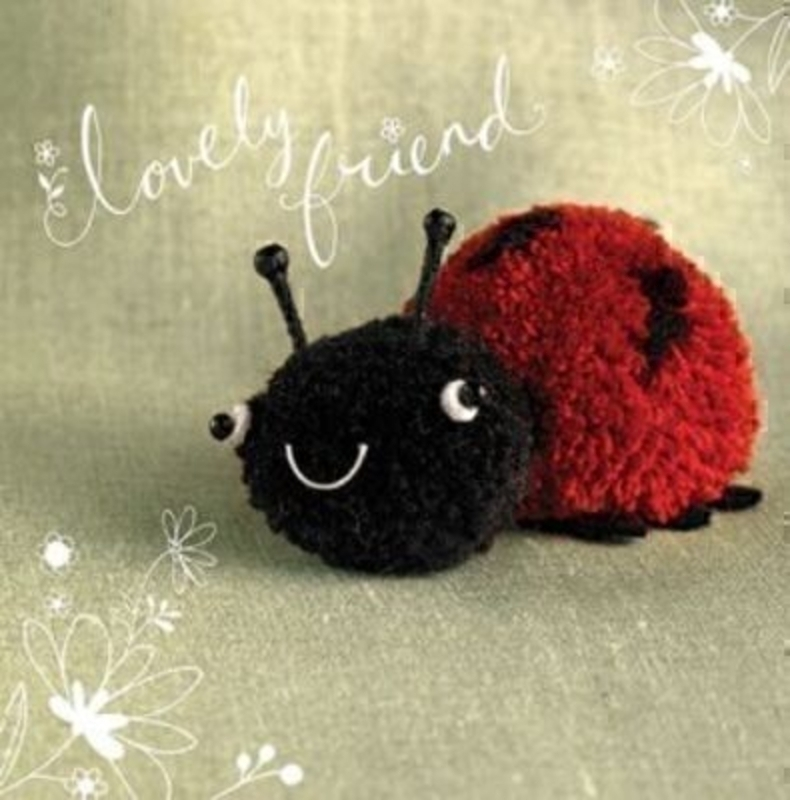 Lovely Friend Card Lily Ladybug by Paper Rose: Booker Gifts