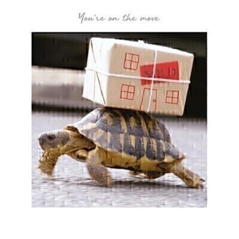 Moving Tortoise New Home Card by Paper Rose: Booker Gifts