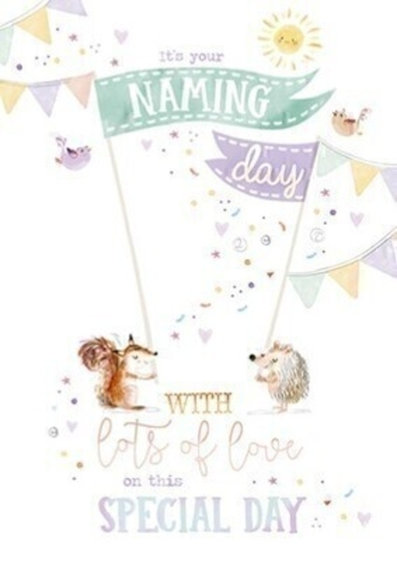 Naming Day Greetings Card by Paper Rose: Booker Gifts