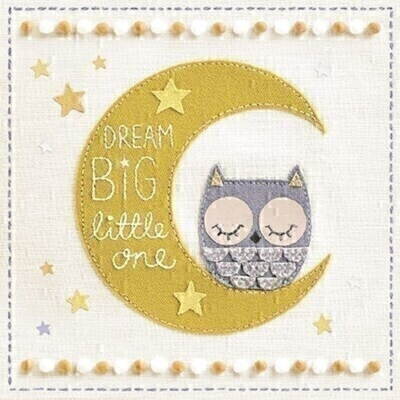 Owl On Moon New Baby Card By Paper Rose: Booker Gifts