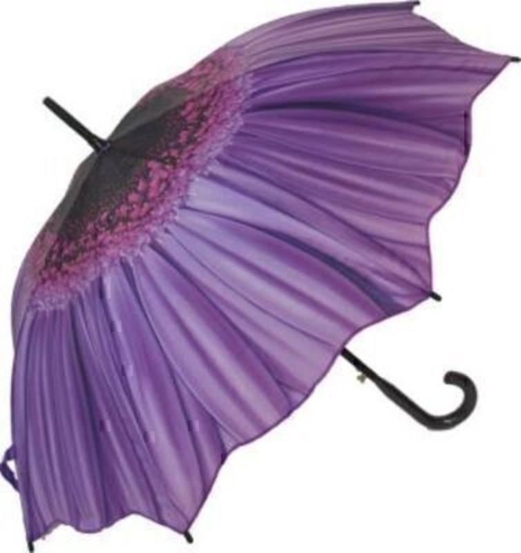 Purple Daisy Umbrella By Blooming Brollies - Stick: Booker Gifts