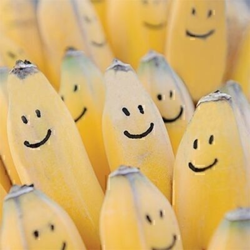 Smiley Bananas Blank Greetings Card by The Art Group: Booker Gifts