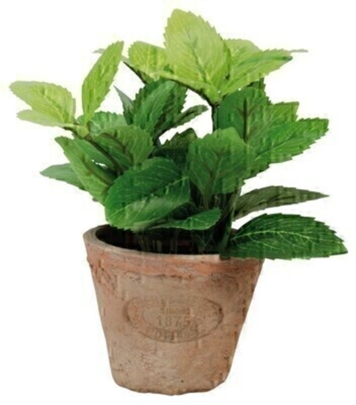 Artificial mint plant in small aged terracotta pot. Needs no watering! Size: 13.8 x 1.38 x 16.2cm