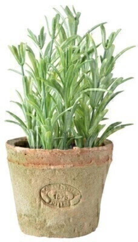 Artificial Rosemary plant with wooden plant label with the name of the herb (in Latin Dutch French German and English) in an aged terracotta pot. Size 13.5 x 13.5 x 20.4cm
