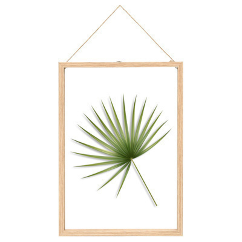 Extra large floating frame with beautiful palm leaf design made by Fallen Fruits.  This stylish easy to hang picture frame would look lovely with any decor and would add a touch of tropical vibe to any home.  A perfect gift for an avid gardenerSize - Extra Large: 30 x 1.9 x 42cm