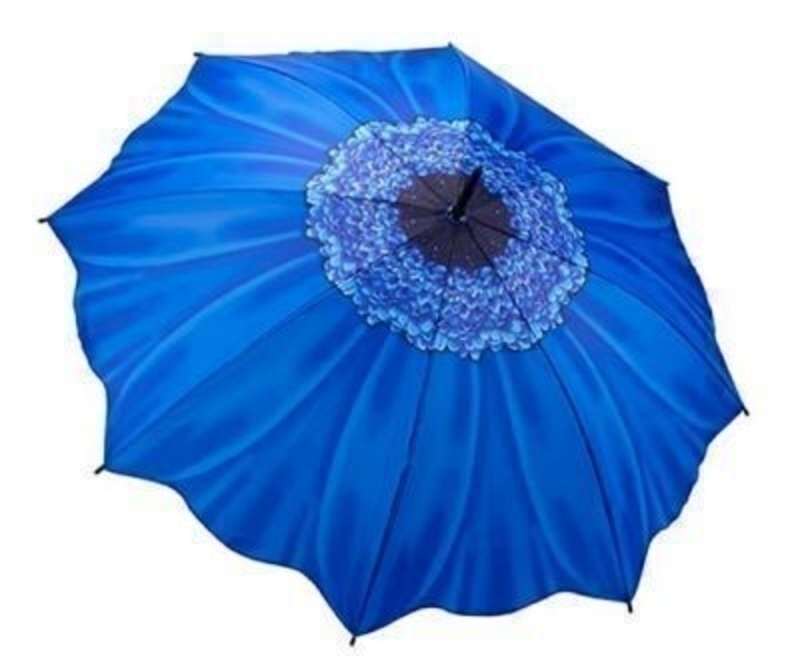 Galleria Blue Daisy Umbrella - Stick: Booker Gifts