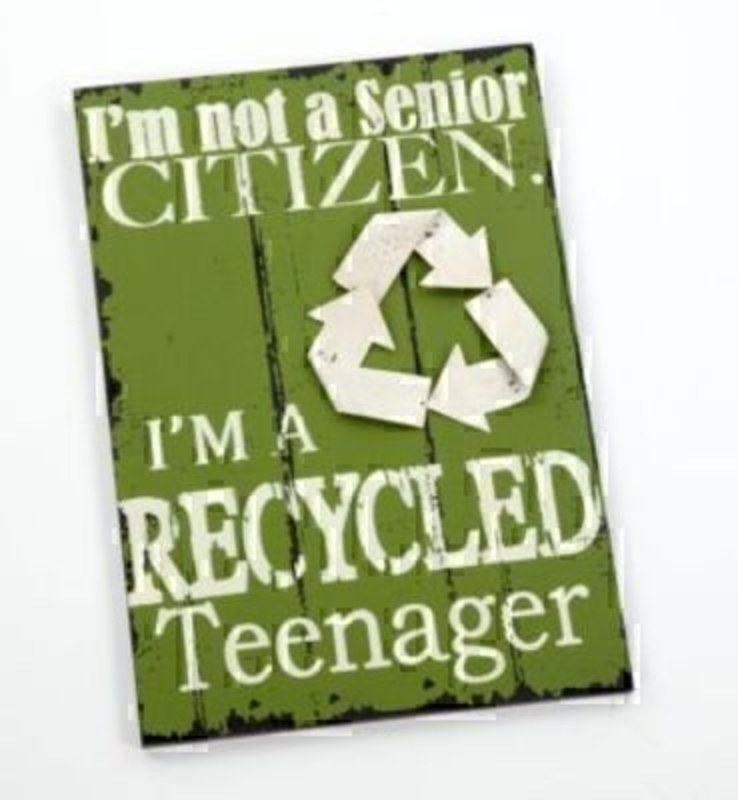 Im Not A Senior Citizen Metal Plaque By Heaven Sends: Booker Gifts