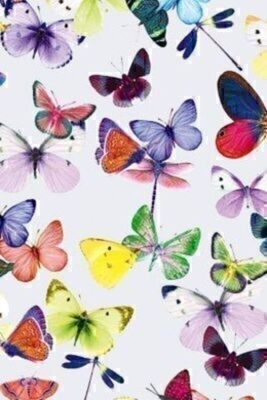 Multicoloured Butterfly Design Roll Wrap Mariposa White: Booker Gifts