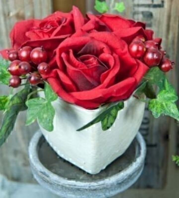 Potted Red Roses With Berries By Bloomsbury: Booker Gifts