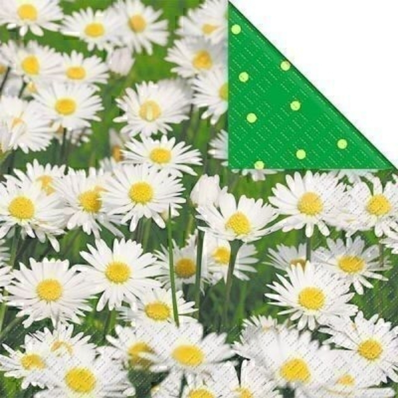 White Daisy Design Ena Paper Napkins by Stewo: Booker Gifts