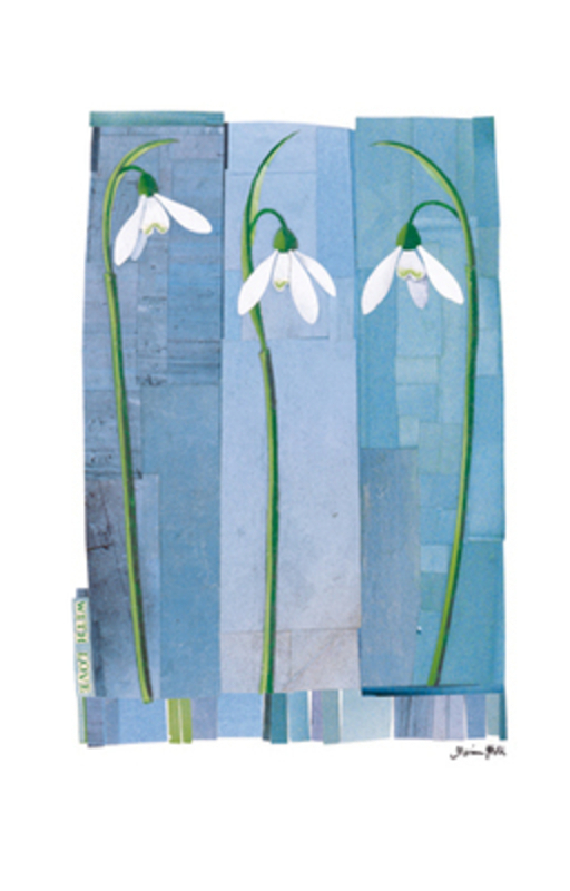 White Snowdrops Sympathy Card by Paper Rose